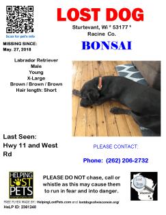 052718 Bonsai Lab Young