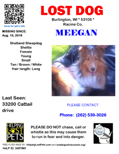 081018 Meegan Shetland Young