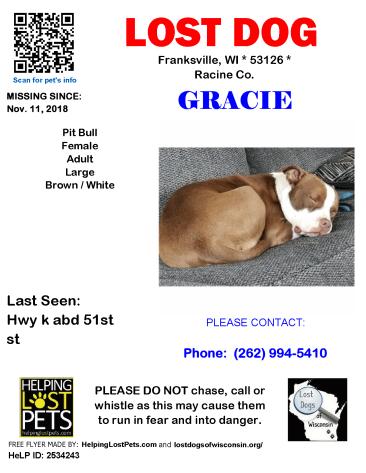 11118 Gracie Pit Adult