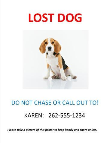 Sample Lost Dog Homemade Flyer - Lost Dog