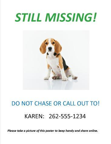 Sample Lost Dog Homemade Flyer - Still Missing