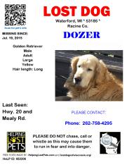 071915 Dozer Golden Adult