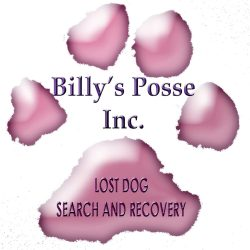 Billy's Posse, Inc.