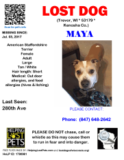 0703 Maya Staffordshire Adult