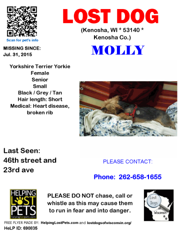 0731 Molly Yorkie Senior