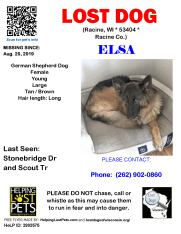 0820 Elsa Long Haird GSD Young - WGR Foster