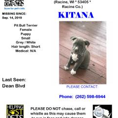 0914 Kitana Pit Puppy