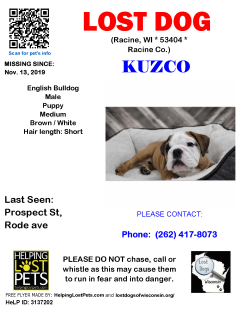 1113 Kuzco Eng Bull Baby