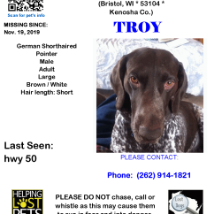 1119 Troy Germ Short Pointer Adult