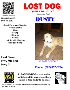1219 Dusty Gr. Pyr Golden Mix Young