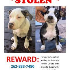 Reward Flyer 090619