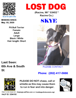 Skye disappeared from her backyard, without a trace, on May 3rd, 2020. She either slipped out of a gate not secured, or someone stole her. A REWARD IS OFFERED FOR HER SAFE RETURN!